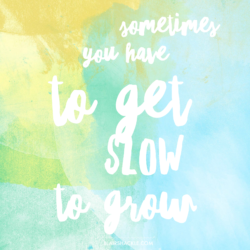 Sometimes you have to get slow to grow